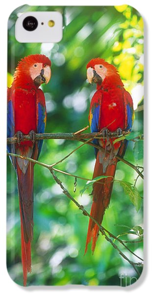 Pair Of Scarlet Macaws IPhone 5c Case by Art Wolfe