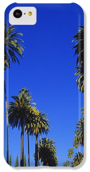 Palm Trees Along A Road, Beverly Hills IPhone 5c Case by Panoramic Images