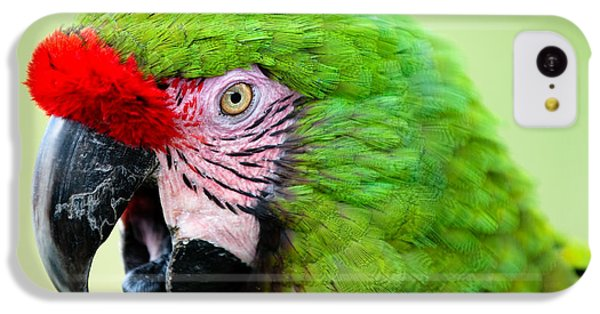 Parrot IPhone 5c Case by Sebastian Musial