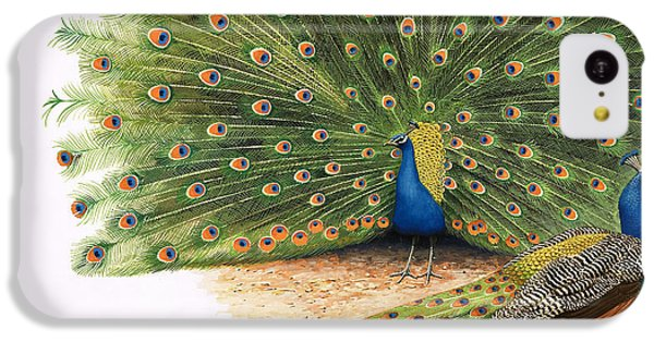 Peacocks IPhone 5c Case by RB Davis