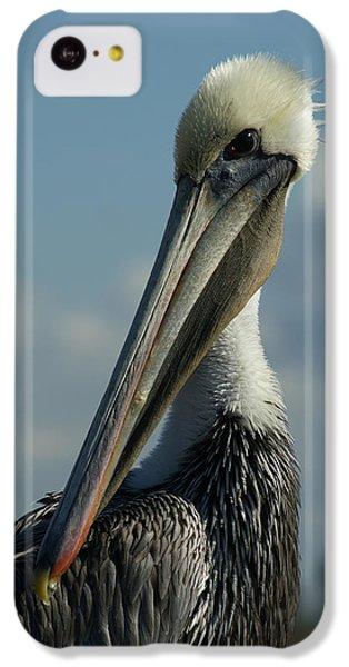 Pelican Profile IPhone 5c Case by Ernie Echols