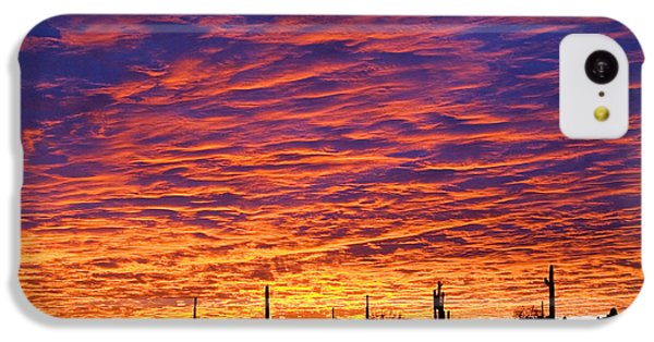 Phoenix Sunrise IPhone 5c Case by Jill Reger