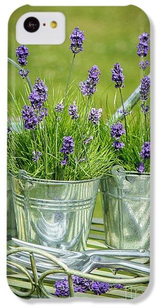 Pots Of Lavender IPhone 5c Case by Amanda Elwell