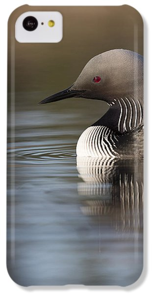 Profile Of A Pacific Loon IPhone 5c Case by Tim Grams