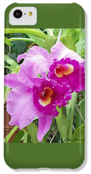 Purple Cattleya Orchids IPhone 5c Case by Ellen Henneke