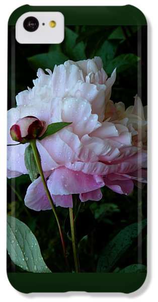 Rain-soaked Peonies IPhone 5c Case by Rona Black