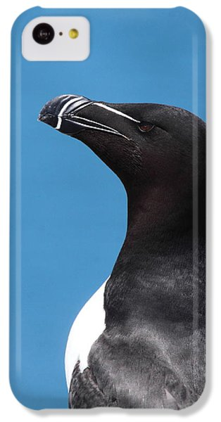 Razorbill Profile IPhone 5c Case by Bruce J Robinson