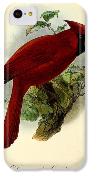 Red Cardinal IPhone 5c Case by J G Keulemans