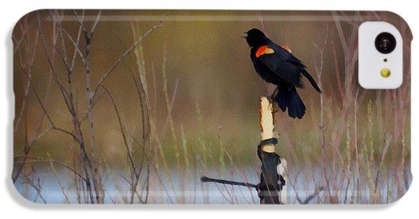 Red Winged Blackbird 2 IPhone 5c Case by Ernie Echols