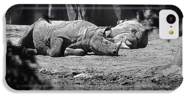 Rhino Nap Time IPhone 5c Case by Thomas Woolworth