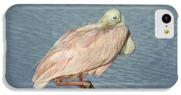Roseate Spoonbill IPhone 5c Case by Kim Hojnacki