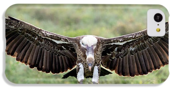 Ruppells Griffon Vulture Gyps IPhone 5c Case by Panoramic Images