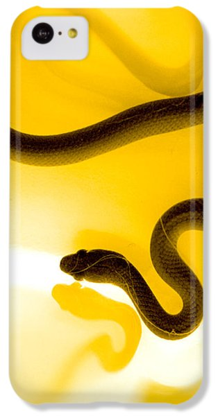 S IPhone 5c Case by Holly Kempe