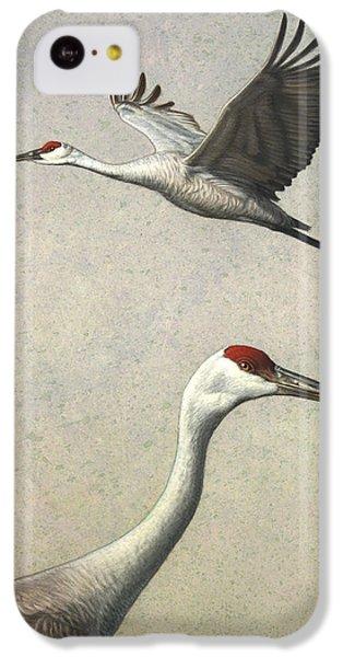 Sandhill Cranes IPhone 5c Case by James W Johnson