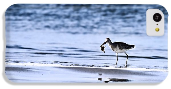 Sandpiper IPhone 5c Case by Stephanie Frey