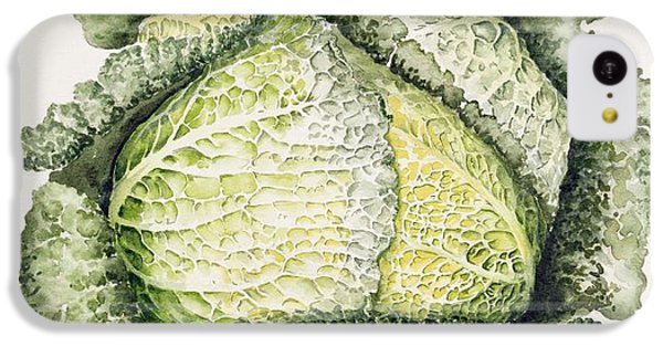Savoy Cabbage  IPhone 5c Case by Alison Cooper