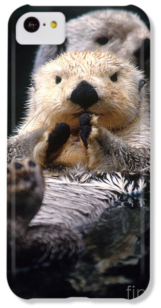 Sea Otter Pup IPhone 5c Case by Mark Newman