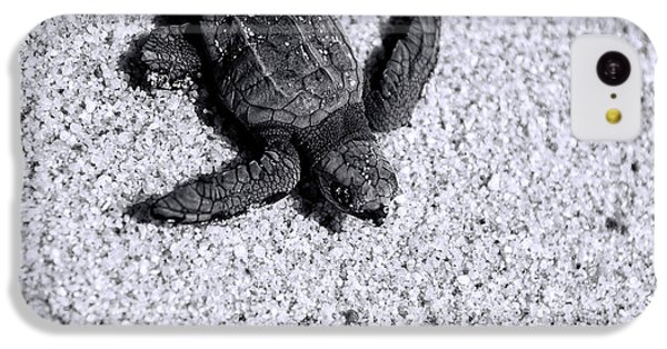 Sea Turtle In Black And White IPhone 5c Case by Sebastian Musial