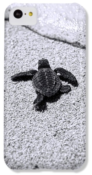 Sea Turtle IPhone 5c Case by Sebastian Musial