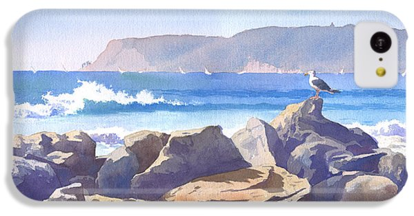 Seagull And Point Loma IPhone 5c Case by Mary Helmreich