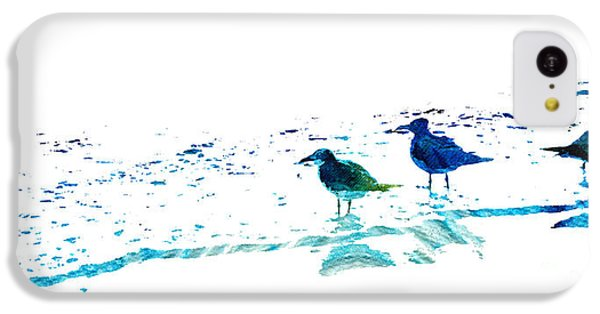 Seagull Art - On The Shore - By Sharon Cummings IPhone 5c Case by Sharon Cummings