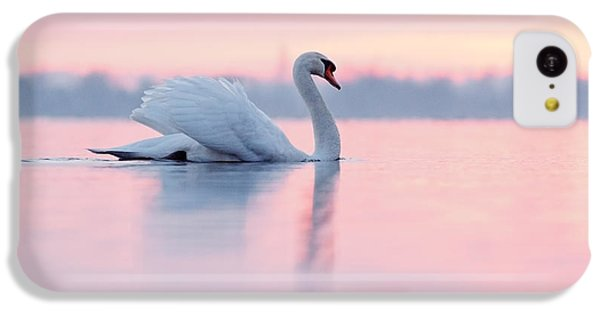 Serenity   Mute Swan At Sunset IPhone 5c Case by Roeselien Raimond