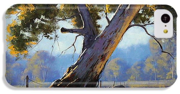 Shady Tree IPhone 5c Case by Graham Gercken