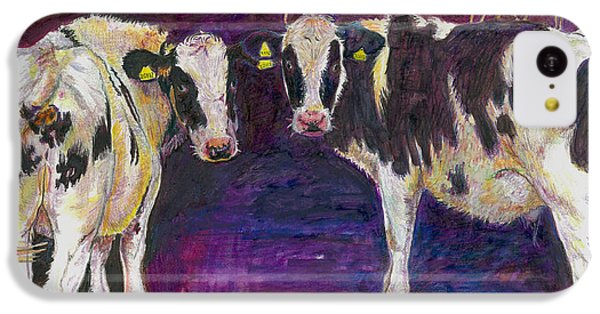 Sheltering Cows IPhone 5c Case by Helen White