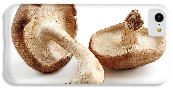 Shiitake Mushrooms IPhone 5c Case by Elena Elisseeva
