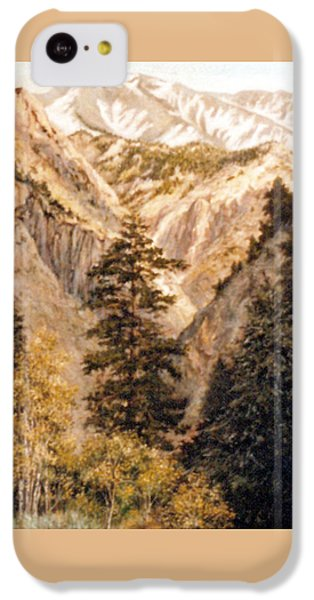 Shirley Temple Mine IPhone 5c Case by Donna Tucker