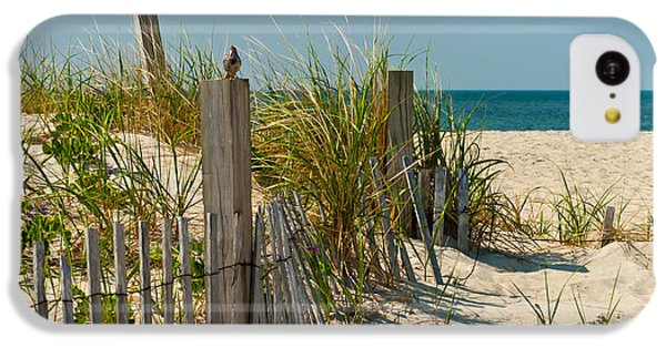 Singer At The Shore IPhone 5c Case by Michelle Wiarda