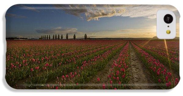 Skagit Tulip Fields Sunset IPhone 5c Case by Mike Reid