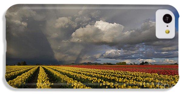 Skagit Valley Storm IPhone 5c Case by Mike Reid
