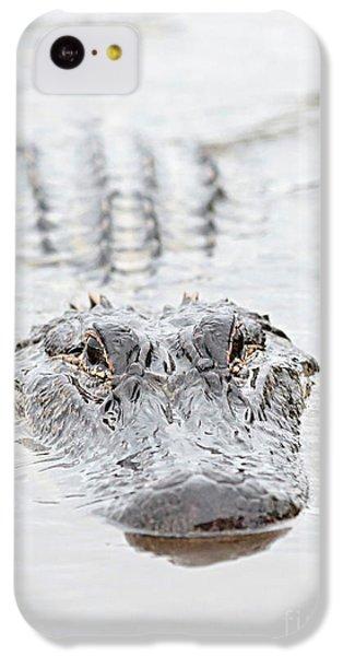 Sneaky Swamp Gator IPhone 5c Case by Carol Groenen