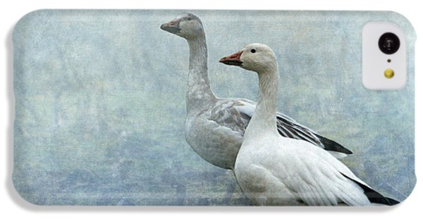 Snow Geese IPhone 5c Case by Angie Vogel