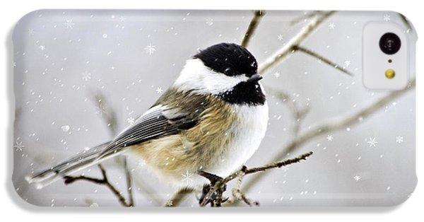 Snowy Chickadee Bird IPhone 5c Case by Christina Rollo