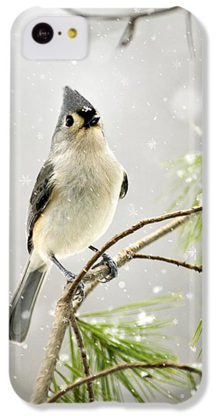Snowy Songbird IPhone 5c Case by Christina Rollo