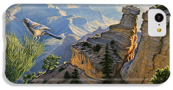 South Rim Morning IPhone 5c Case by Paul Krapf