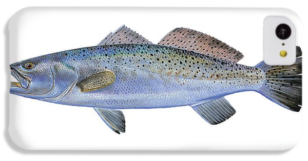 Speckled Trout IPhone 5c Case by Carey Chen