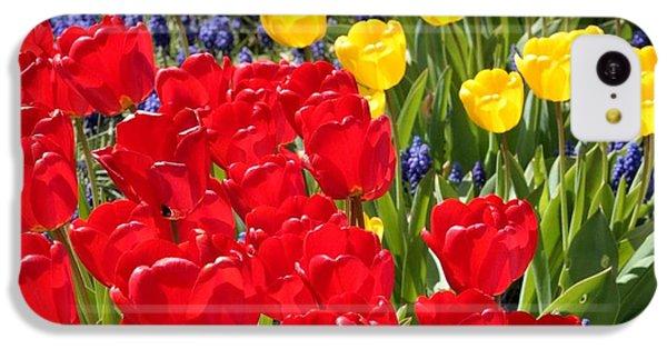 Spring Sunshine IPhone 5c Case by Carol Groenen