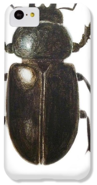 Stag Beetle IPhone 5c Case by Ele Grafton