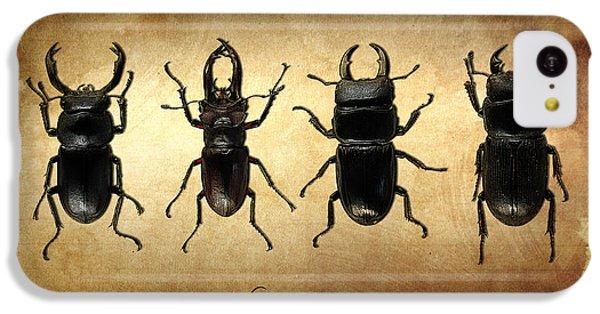 Stag Beetles IPhone 5c Case by Mark Rogan
