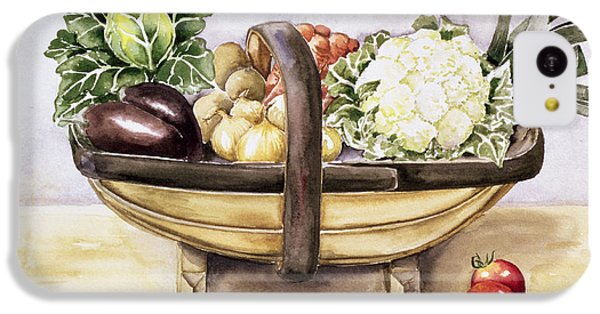 Still Life With A Trug Of Vegetables IPhone 5c Case by Alison Cooper