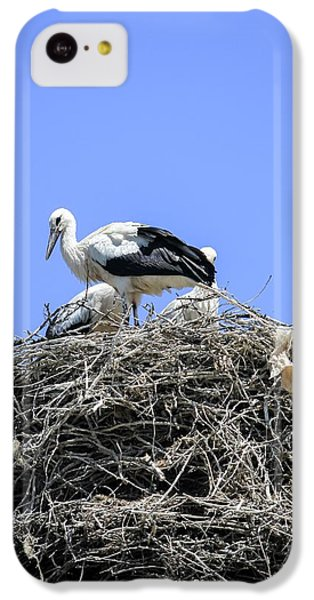 Storks Nesting IPhone 5c Case by Photostock-israel