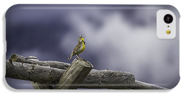 Stormy Weather And A Sweet Song IPhone 5c Case by Thomas Young