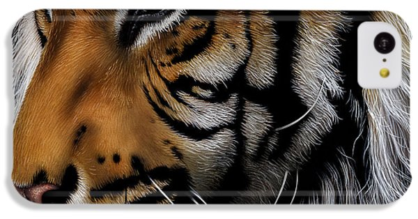 Sumatran Tiger Profile IPhone 5c Case by Jurek Zamoyski
