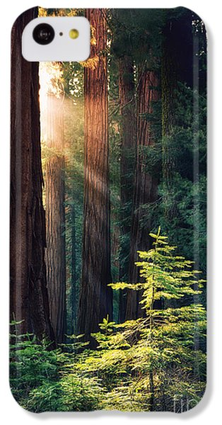 Sunlit From Heaven IPhone 5c Case by Jane Rix