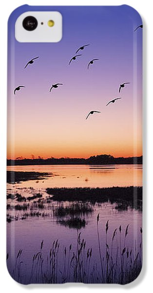 Sunrise At Assateague - Wetlands - Silhouette  IPhone 5c Case by Shara Lee