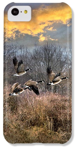 Sunset Geese IPhone 5c Case by Christina Rollo