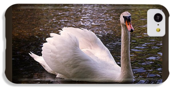 Swan Pose IPhone 5c Case by Rona Black